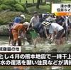 湧水復活に感謝 水前寺成趣園で池の清掃