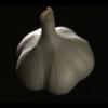 蒜(にんにく)