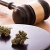 カルフォルニアがマリファナ解禁すれば医療大麻仮想通貨が上がる?