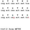 新型コロナウイルス 〜 遺伝子改変の痕跡