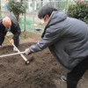 菜園プロジェクト じゃがいもを植えました