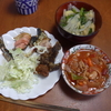 幸運な病のレシピ( 1988 )朝:コウイカ網焼き、イワシ焼きびたし、鱒、鳥モモ網焼き、ミートソース、味噌汁、マユのご飯