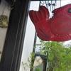 東京ぶらプラ散歩 本郷・菊坂・金魚坂 樋口一葉の御用達・質屋と西片の回転すし 🍣