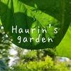 うちの庭を探検!7月の植物&昆虫~緑あふれる~