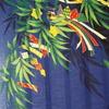 笹の葉さらさら