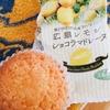広島レモン ショコラマドレーヌ