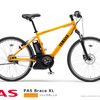 What do you think of the new product? PAS BraceXL 2014