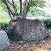 万葉歌碑を訪ねて(その164)―奈良県高市郡明日香村坂田寺跡万葉歌碑―