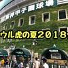 【甲子園】7/26  阪神vs広島戦をアイビーシートで観戦!!一時は大雨で大惨事だったが、なんとか試合見れました。