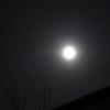 今夕のご臨在   〜青い月