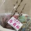 まちなかで買った山田の啓翁桜《年末年始ふりーきっぷ旅・その4》