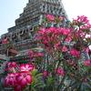 タイ*2010*ワット・アルンに登ってみた!ワット・アルン*ワット・スタット