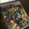 PS3のドラゴンズクラウンを買ってみた。意外と面白い。