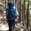 静かな山歩き 12月1日 川苔山