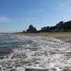 大切にしている時間② 早朝の海で泳いでさっぱり浄化