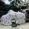 京都の有名な縁切神社 安井金比羅宮へ