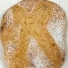 キムチ酵母でパンを焼いてみた