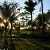 バリ島の朝