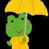【傘事情】雨も嫌だけど紫外線はもっと怖い