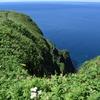 北海道礼文島観光案内:トレッキングコース「桃岩展望台」〜「知床」