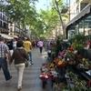 ホテルから歩いてカタルーニャ音楽堂へ