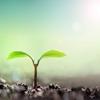 習慣化した行動を継続させるためのポイント:成長を感じさせ続けろ♪