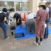緑化ボランティア:パンジーの植え替え