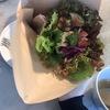 【クンバ ドゥ ファラフェル/神泉】フムスと野菜たっぷりの花束ファラフェルピタサンドが食べられるお店