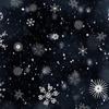 二十四節季「小雪(しょうせつ)」 禅語「聴雨寒更尽 開門落葉多」を想う