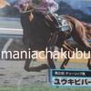 サラブレッドカード95 061 第2回チューリップ賞 ユウキビバーチェ