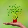 経済を知る!究極の配当利回りを持つ米国株銘柄アルトリア・グループ