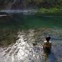 川泳ぎで涼む