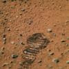 本日、火星逆行時期が始まりましたNe