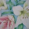 完成☆ユリの花ページを色鉛筆で 花日和花だより