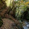 天滝への道