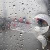 今日の一枚は《雨》