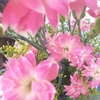 日常に花を