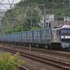 5月22日撮影 東海道線 平塚~大磯間 大磯~二宮間 貨物列車4本撮影 1155ㇾ 2079ㇾ 2052ㇾ 1070ㇾ