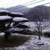 初の積雪と次元の違う頭脳