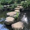 国分寺の殿ヶ谷戸庭園