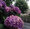 30歳OLでクラブ初心者がひとりで渋谷オールしてきた