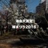 湯島天満宮の梅まつり(2018)に行ってきました