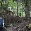 のろやまさんと西熊遊山 樹界