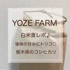 YOZE FARM 栃木県那須山麓のコシヒカリ★白米食レポ♪