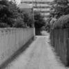 【今日の1枚】見てみて、こっちの路地はさ地面が土だよ。すごくないですか?