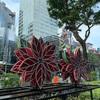 クリスマスをシンガポールで祝う意味について考える。