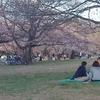 65s コロナウィルス余波、公園は人だらけ・・