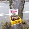 けやき通り・京葉線通り 受動喫煙回避は不可能でしたが改善されました。