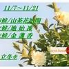 立冬/early winter/二十四節気