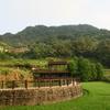 ロープウェイで行く猫空(マオコン)の茶畑と夜景の絶景!見どころと行き方【台湾・台北】
